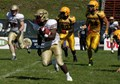 2014 RSEQ Football Team Preview (4/6): Concordia Stingers
